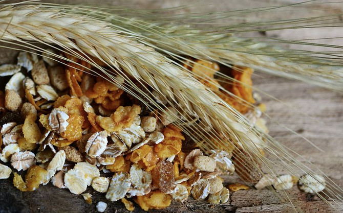 Wholegrains may reduce body weight and inflammation independently of gut microbiota