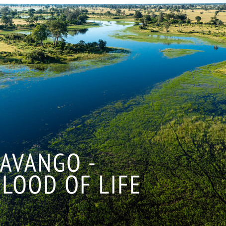 Okavango - A Flood of Life: Behind The Scenes