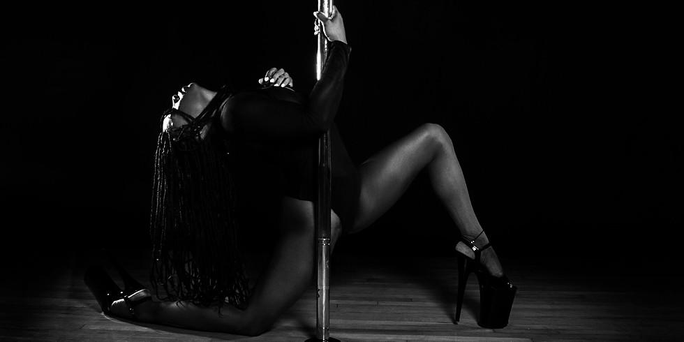 Velvet | Sensual Pole & Subtle Seduction Workshop