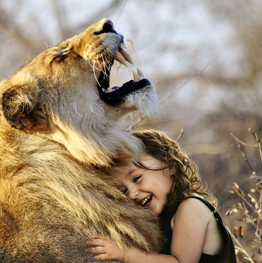 lion-3012515.jpg