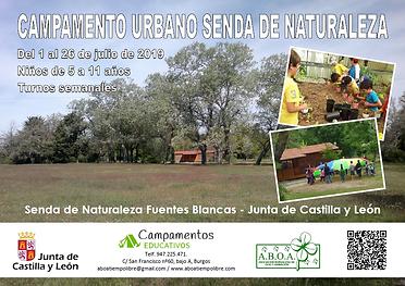 Cartel Campamento Senda 2019.png