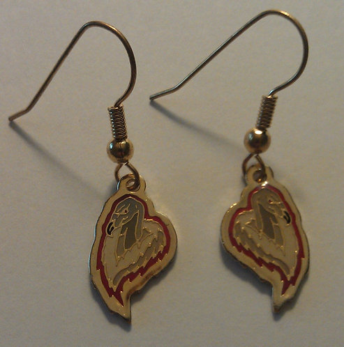 CHICAGO CONDORS ABL Earrings