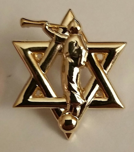 Star of David / Moroni / Jewish Mormon Lapel Pin