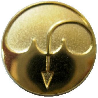 CM-2773G - Baptismal Symbol Lapel Pin - Gold