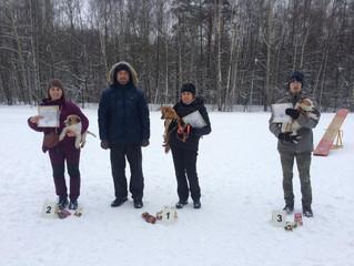 24 декабря прошли соревнования по аджилити в Нашем Кинологическом Центре Ясеневый.
