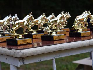 Немного фотографий с соревнований по аджилити прошедших 10 сентября