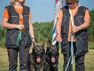 Тверь, Чемпионат РКФ CACТ по спортивно-прикладному собаководству