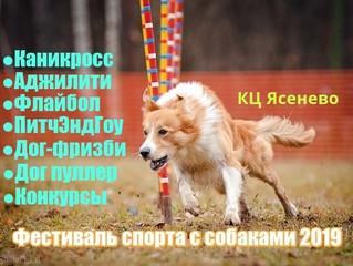26 мая 2019 года в КЦ «Ясенево» пройдет V Фестиваль спорта с собаками