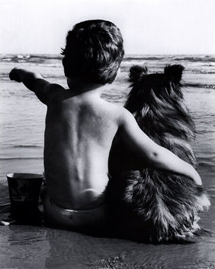 dogs%2Cfriendship%2Cb%2Cw%2Cart%2Cblack%