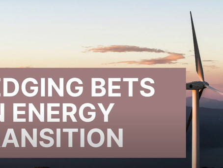 Hedging Bets on Energy Transition