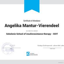 SOIT_Certyfikat_NO DATE.jpg
