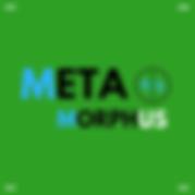 Meta Profile.png
