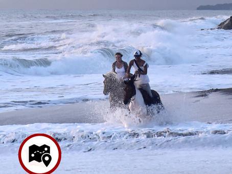 SALTY COWBOY BALI – HORSE RIDING EXPERIENCES KEDUNGU