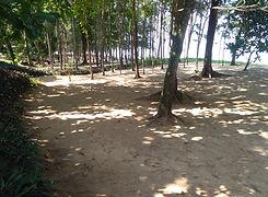 Khao Lak: Bangsak Beach in Khaolak.