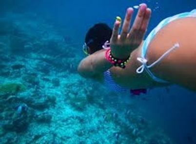 snorkeling-5-323.jpg