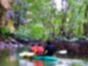 Khao Lak: Kajak Mongroven Ausflug in Khaolak.