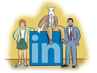 Maximizing LinkedIn: Narratives