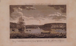 View of Cape Rouge
