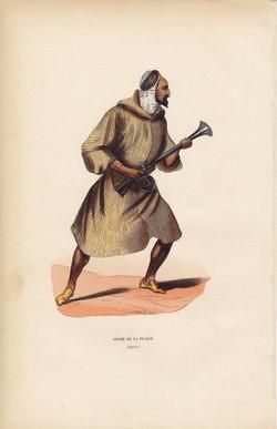 Arabe De La Plaine
