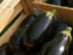 eggplant-1707629_640.jpg