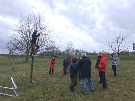 Obstbaumschnitt 2020 Workshop