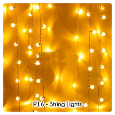 P16 - String Lights.png