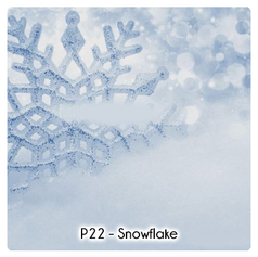 P22 - Snowflake.png