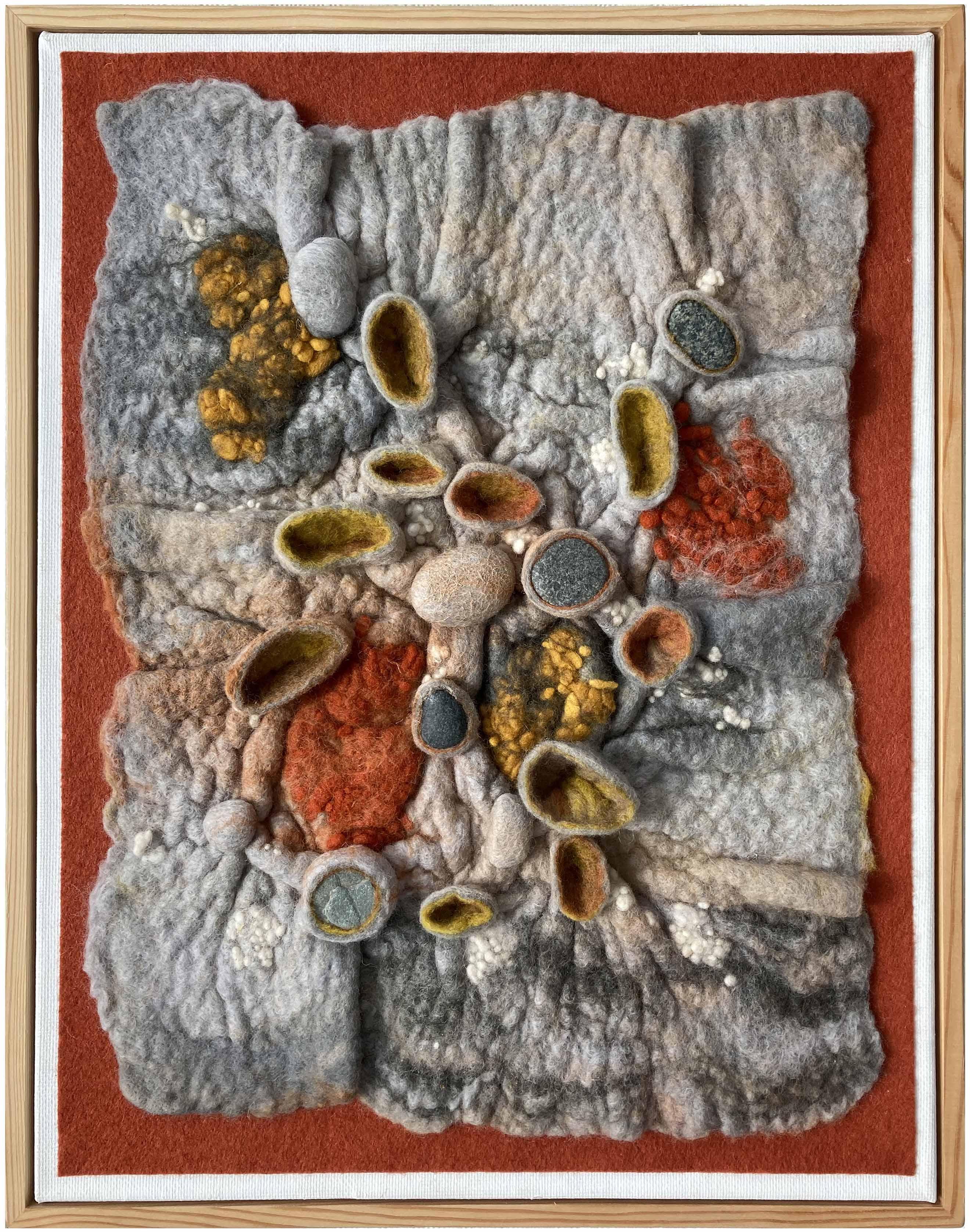 Lichen' Rocks