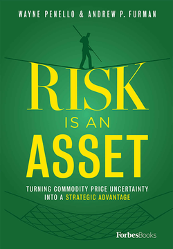 Risk Is An Asset by Wayne Penello and Andrew Furman