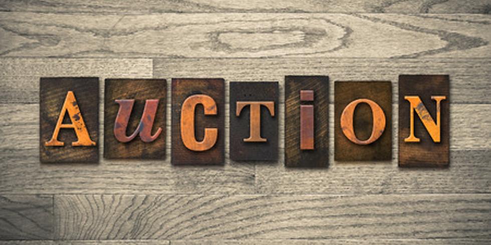 WCWP Silent Auction