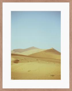 14. Dune 45 on Cinestill Film