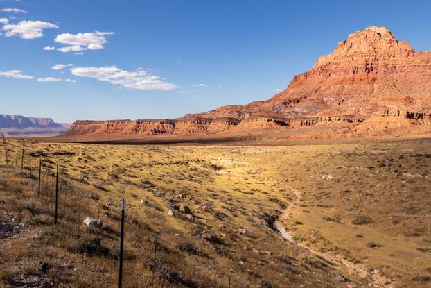 A dry landscape