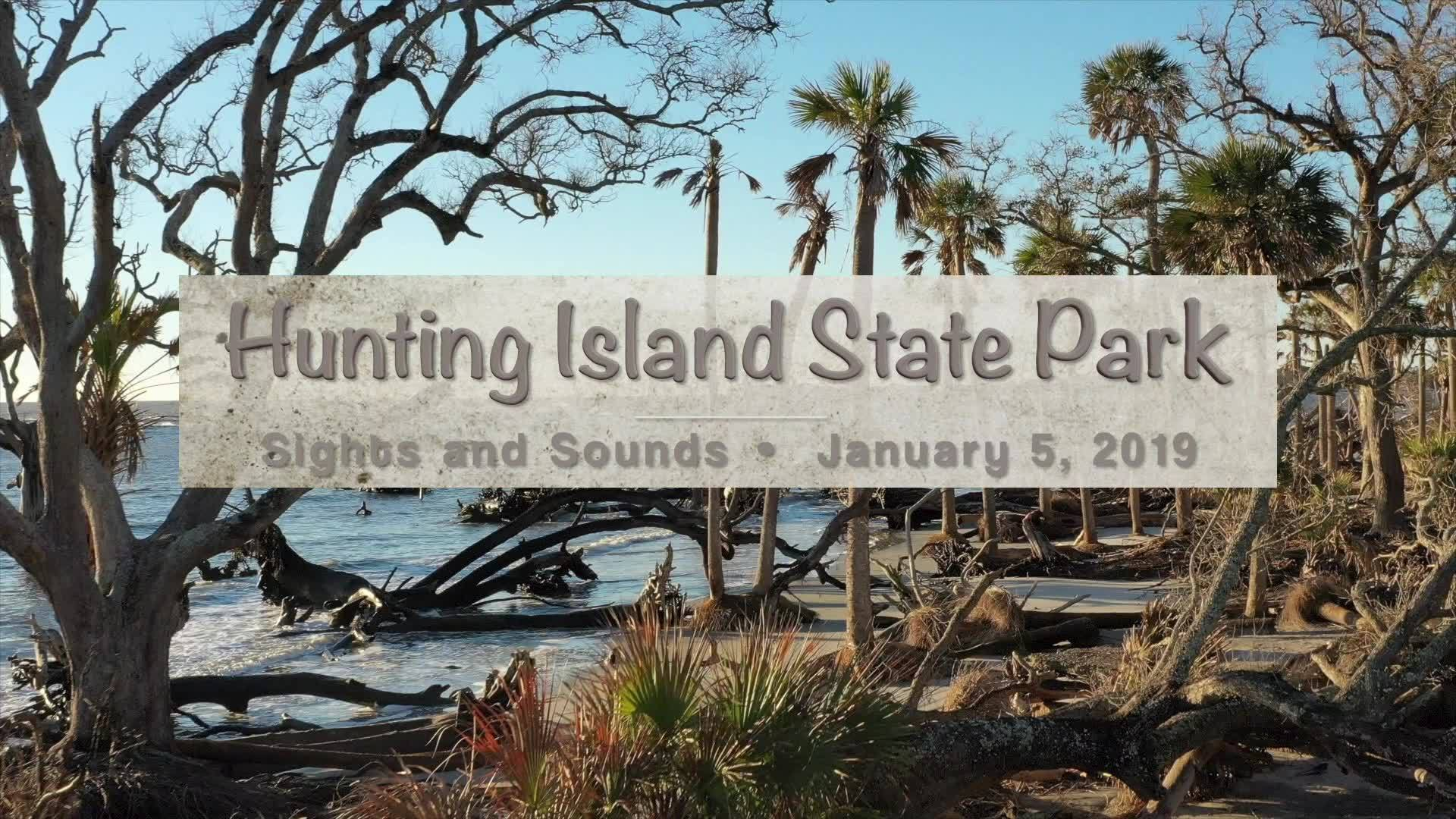 Drone over Hunting Island State Park