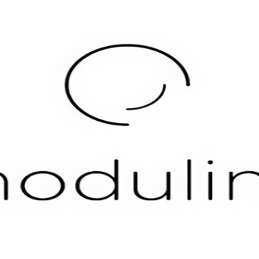 Webinar MODULINE W-I-240620