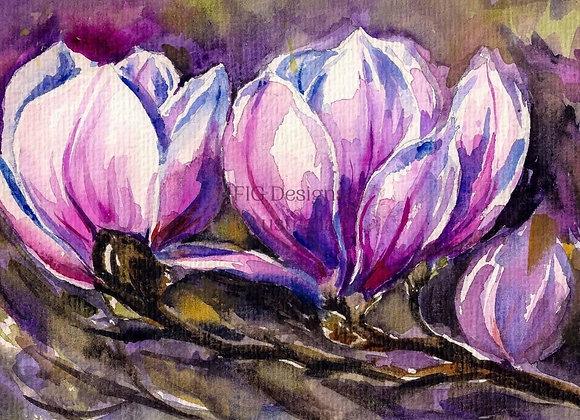 Heaven Scent Magnolias