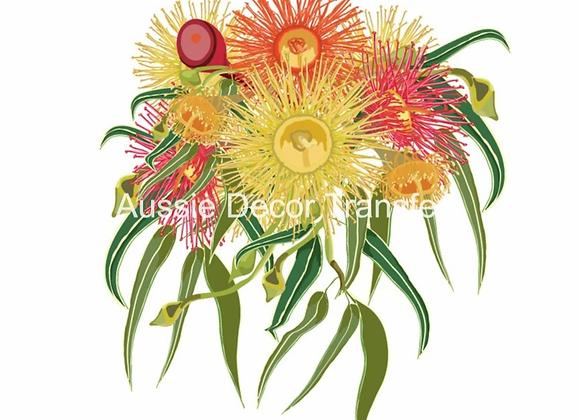 Australian Wildflowers III - Gumnuts & Grevilleas
