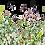 Thumbnail: HOCUS POCUS TRANSFERS - Marvelous Gardens