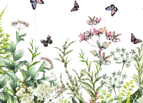 HOCUS POCUS TRANSFERS - Marvelous Gardens