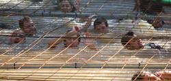 Claustrophobic Cage - Summit Survivo