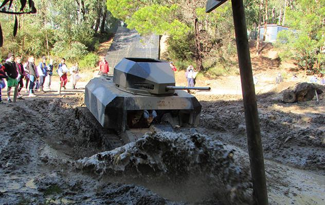Tank Experience