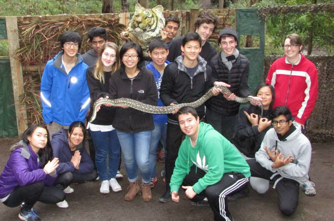 Meet Marty, The Summit's House Python