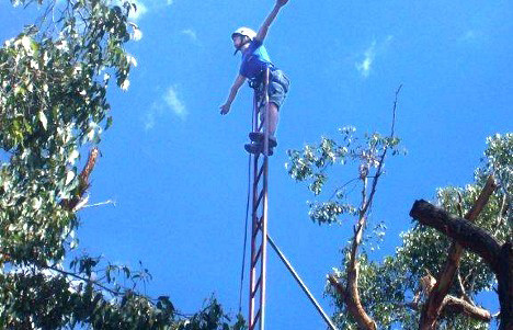 Tash's Ladder