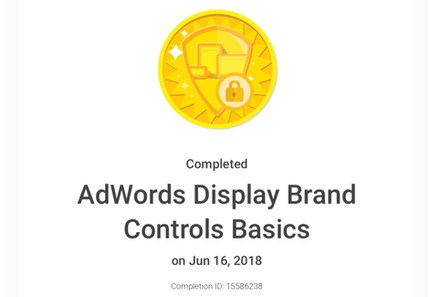 BeeFound.ca Google Adwords Disaply Brand Controls Basics Certification.jpg