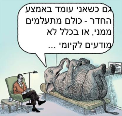 הפיל שבחדר.png