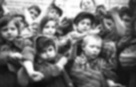 צילום של ניצול השואה דב קולקה.jpg