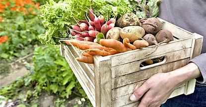 nutrition Neuchâtel