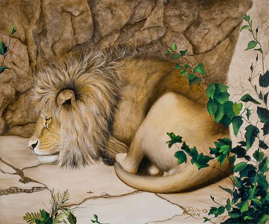 LION, SLEEPING LION, ROCKS, AFRICAN CAT, ivy