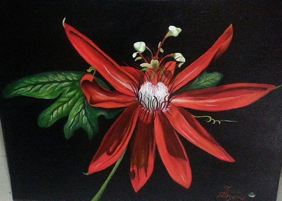 red flower, southern flower, passion flower. red flower painting, passion flower oil painting