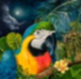 MACAW, BLUE MACAW, MOON, PALM TREE, SEA GREAP, BLUE AND GOLD MACAW, MACAW