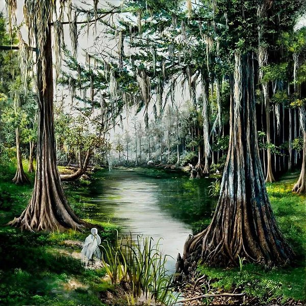FLORIDA, RIVER, FLORIDA RIVER, CYPRES TREES, SWAMP, SPANISH MOSS, EGRETS, FLORIDA TREES, flying egrets, Withlacooche River